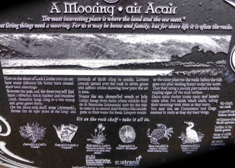 a-mooring