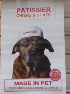 dog-ad-angers