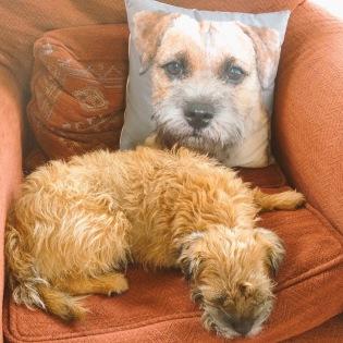 esting-on-sofa