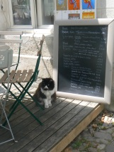 grumpy-cat-with-menu