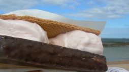mallow-wafer-ic-cream