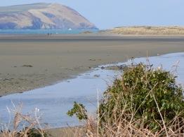 newport-estuary