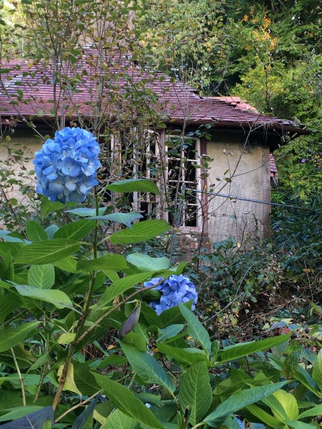ruined-lodge