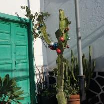 cactus-tree