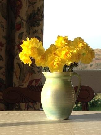 daffs in a vase