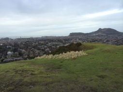 from blackford hill