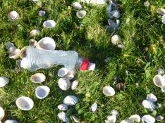 plastic waste2